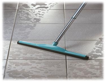 Quartz Floor Squeeze Quartz Home Care I P Ltd
